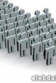 الفهلوة والشطارة فى فن الإدارة